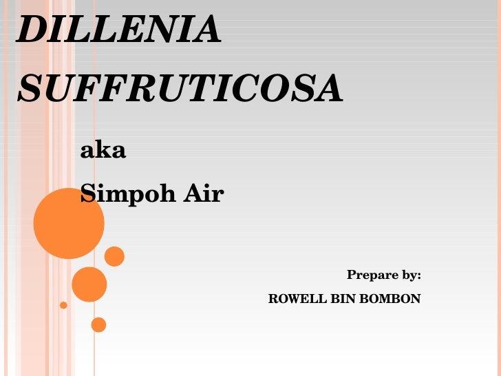 DILLENIA SUFFRUTICOSA aka Simpoh Air Prepare by: ROWELL BIN BOMBON