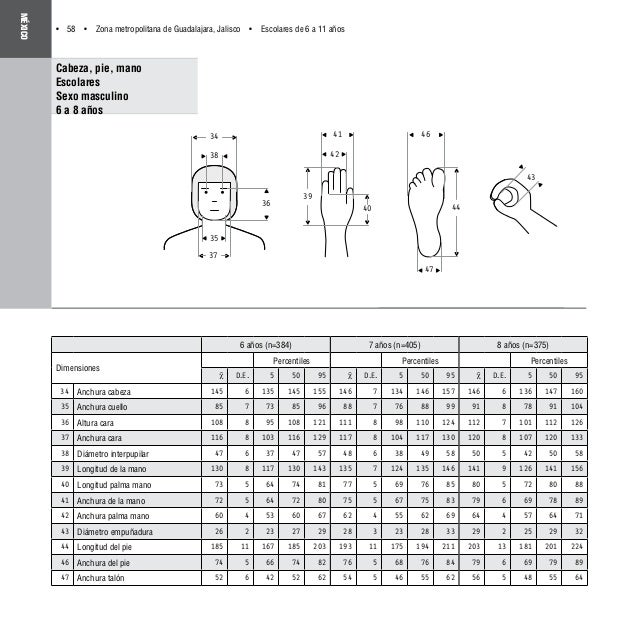 Dimensiones antropom tricas latino americanas for Antropometria de la vivienda pdf