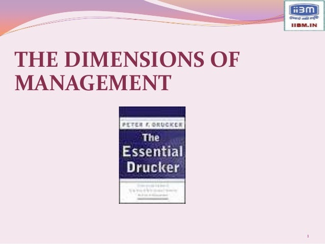 THE DIMENSIONS OFMANAGEMENT                    1
