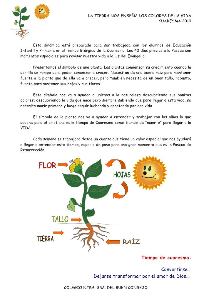 LA TIERRA NOS ENSEÑA LOS COLORES DE LA VIDA                                                                  CUARESMA 2010...