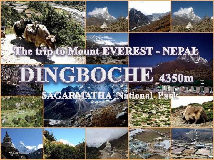 DINGBOCHE 4350m - NEPAL