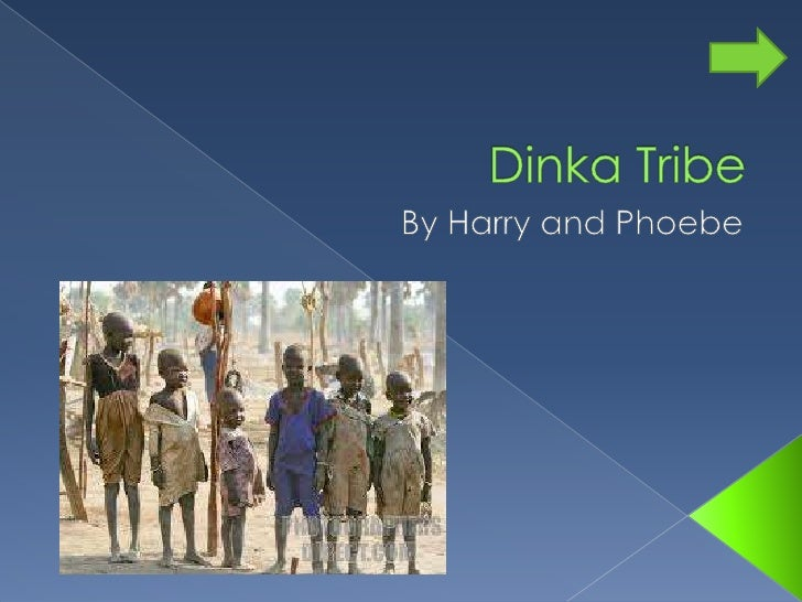 Dinka Tribe <br />By Harry and Phoebe<br />