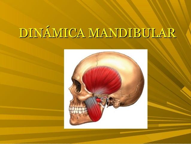 DINÁMICA MANDIBULARDINÁMICA MANDIBULAR