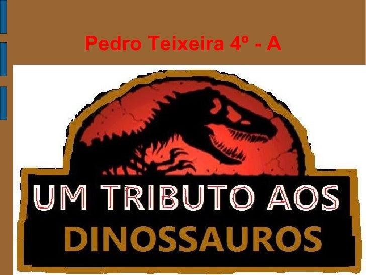 Pedro Teixeira 4º - A