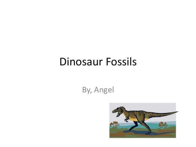 Dinosaur Fossils    By, Angel