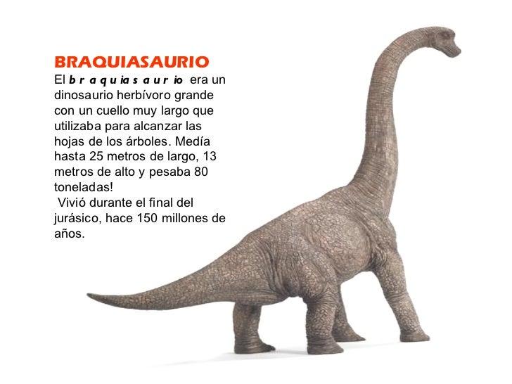 Conocemos a los dinosaurios for Tipos de arboles y caracteristicas
