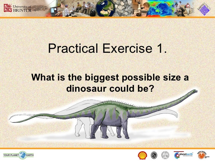 Practical Exercise 1.What is the biggest possible size a       dinosaur could be?