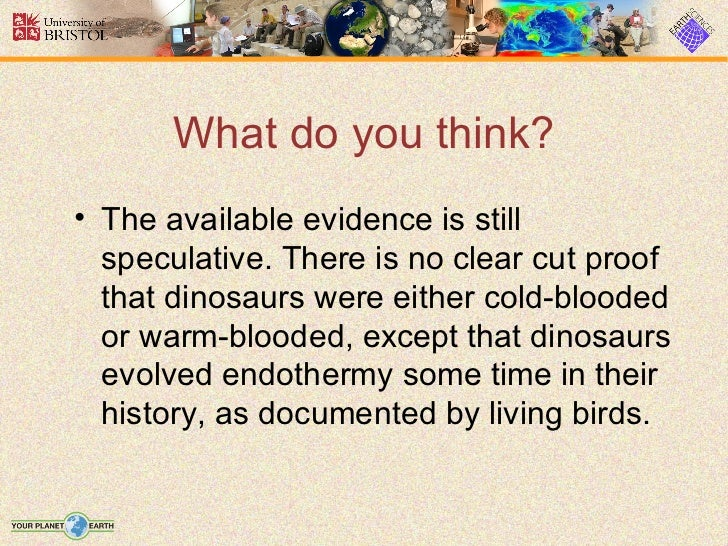 What do you think?• The available evidence is still  speculative. There is no clear cut proof  that dinosaurs were either ...