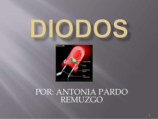 1  POR: ANTONIA PARDO  REMUZGO