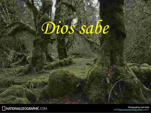 Dios sabe            Colabora con la distribución:            www.AvanzaPorMas.com