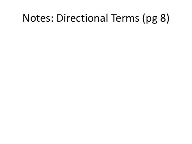 Notes: Directional Terms (pg 8)