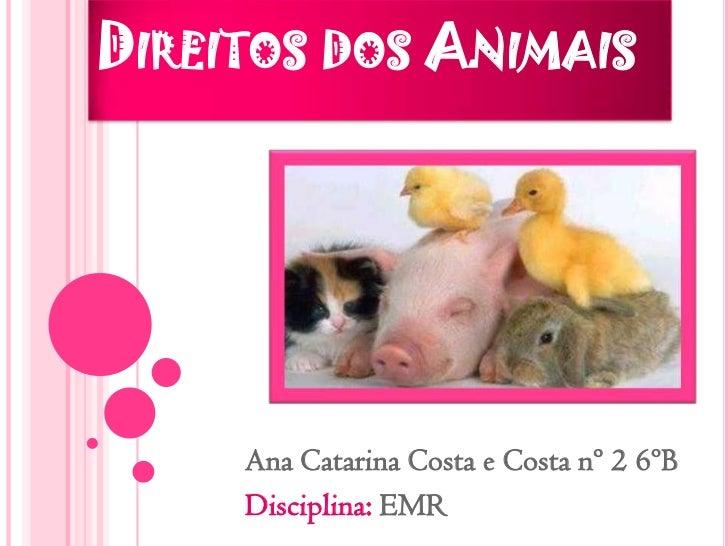 Direitos dos Animais<br />Ana Catarina Costa e Costa nº 2 6ºB<br />Disciplina: EMR<br />