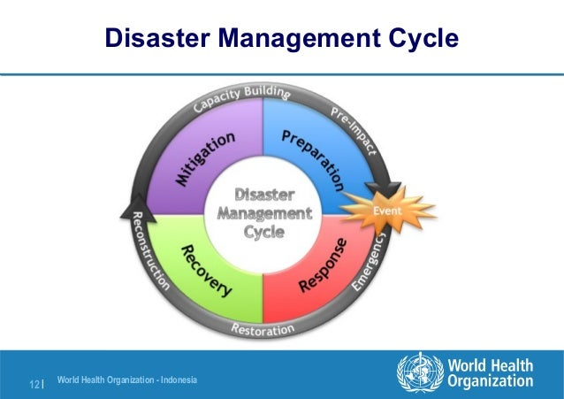 risk and crisis management pdf