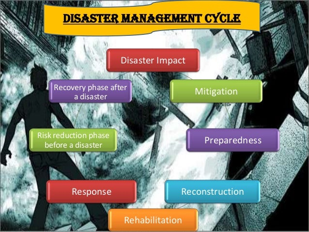 Essay Role Students Disaster Management