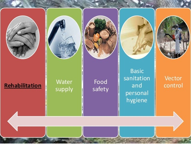 the food safety and sanitation