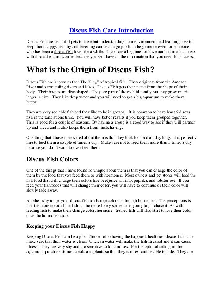 Discus fish care information for Facts about fishing
