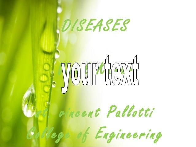 DISEASES Vivek Kumar st. vincent Pallotti College of Engineering