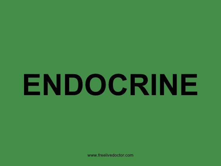 ENDOCRINE www.freelivedoctor.com