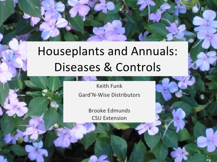 Houseplants and Annuals: Diseases & Controls Keith Funk Gard'N-Wise Distributors Brooke Edmunds CSU Extension
