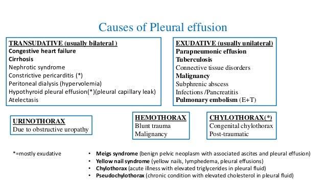pulmonary tuberculosis essay
