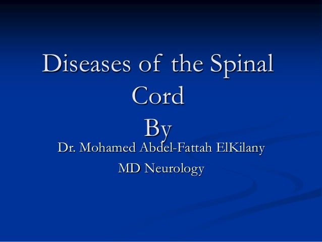 Diseases of the Spinal Cord By Dr. Mohamed Abdel-Fattah ElKilany MD Neurology