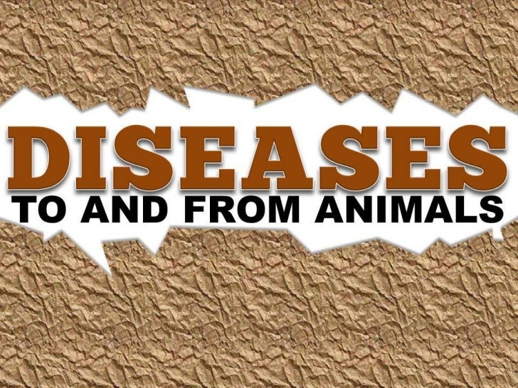 Diseases (to and from Animals)
