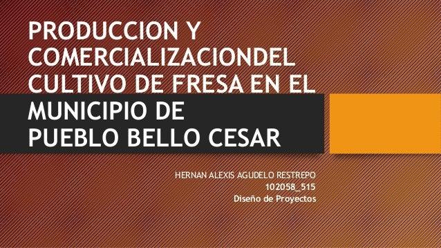 PRODUCCION Y COMERCIALIZACIONDEL CULTIVO DE FRESA EN EL MUNICIPIO DE PUEBLO BELLO CESAR HERNAN ALEXIS AGUDELO RESTREPO 102...