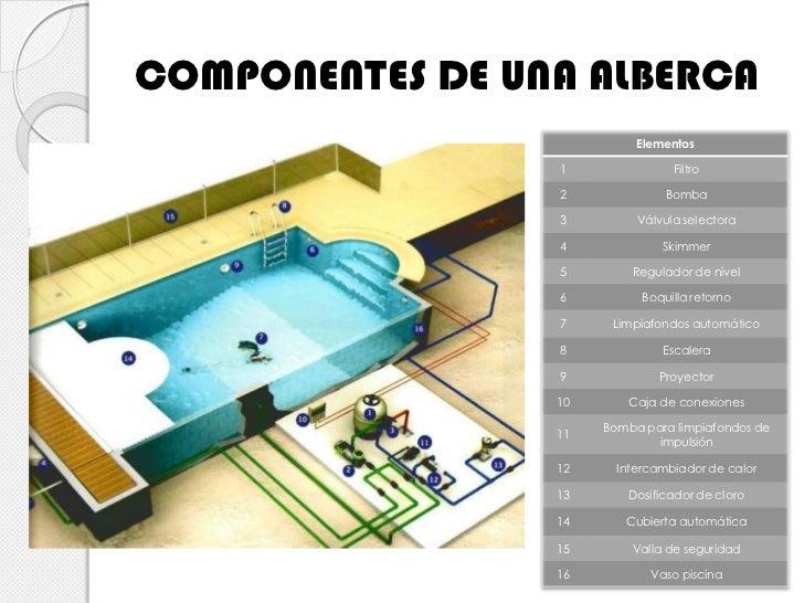 Dise o b sico de red hidr ulica en tinas de ba o y albercas - Medidas para una piscina ...