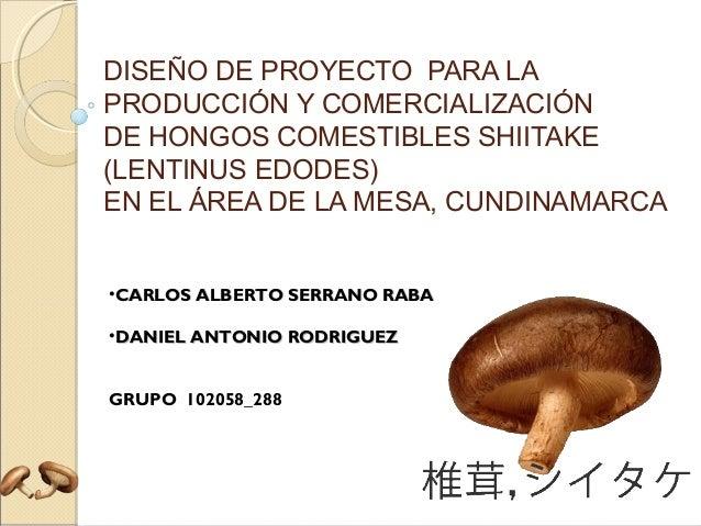 DISEÑO DE PROYECTO PARA LA PRODUCCIÓN Y COMERCIALIZACIÓN DE HONGOS COMESTIBLES SHIITAKE (LENTINUS EDODES) EN EL ÁREA DE LA...