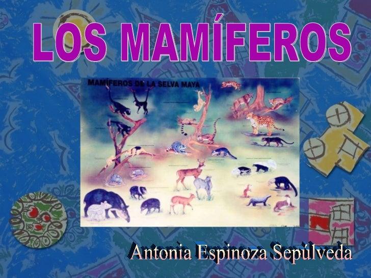 Antonia Espinoza Sepúlveda LOS MAMÍFEROS