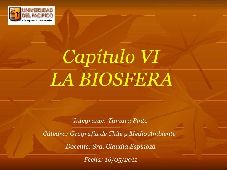 Capítulo VI  LA BIOSFERA   Integrante: Tamara Pinto Cátedra: Geografía de Chile y Medio Ambiente  Docente: Sra. Claudia Es...