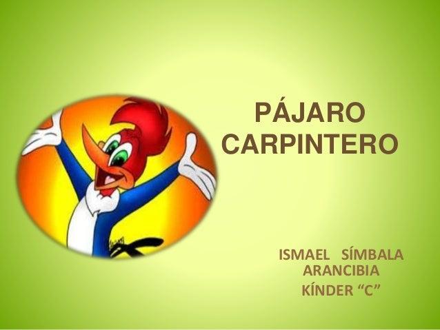 """PÁJARO CARPINTERO ISMAEL SÍMBALA ARANCIBIA KÍNDER """"C"""""""