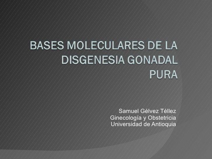 Samuel Gélvez Téllez Ginecología y Obstetricia Universidad de Antioquia