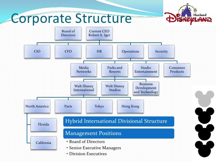 the history and organizational structure of walt disney company A case study on 02/11/08 02/11/08 agenda about disney divisions of disney a bit of history about the case swot analysis its current executive management recommended organizational structures.