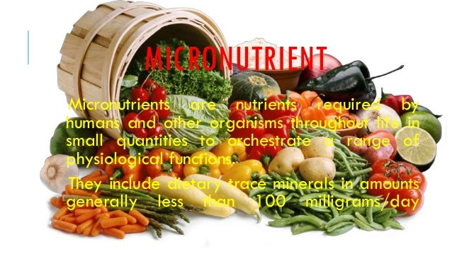 macro and micro nutrients Balancing macro- and micronutrients the american diet has changed drastically over the past thirty years, and for many the change wasn't for the better.