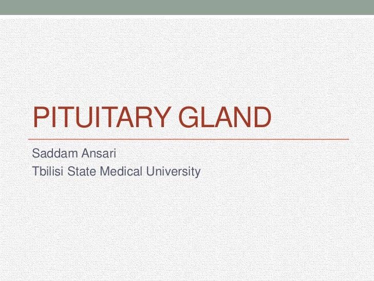 Pituitary gland<br />Saddam Ansari<br />Tbilisi State Medical University<br />