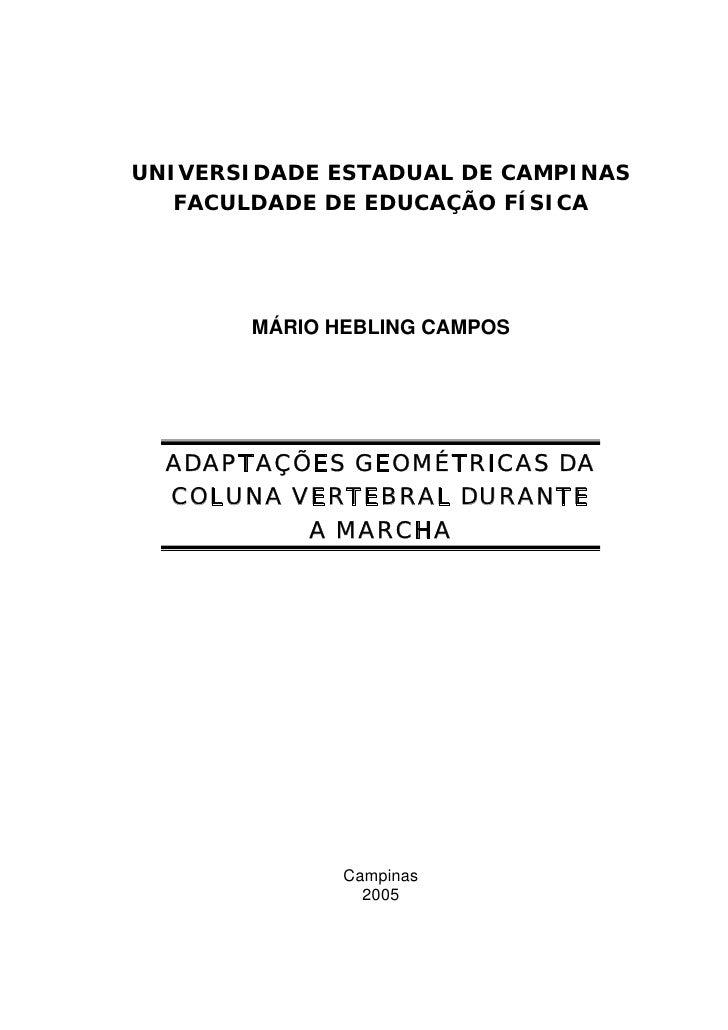 UNIVERSIDADE ESTADUAL DE CAMPINAS   FACULDADE DE EDUCAÇÃO FÍSICA       MÁRIO HEBLING CAMPOS  ADAPTAÇÕES GEOMÉTRICAS DA  CO...