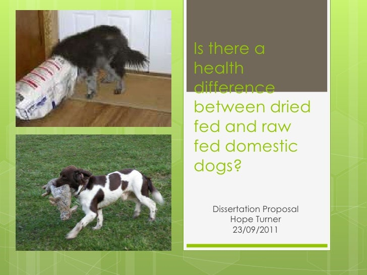 Of dogs and dissertations