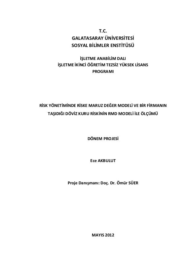 phd thesis financial risk management Master's degree thesis enterprise risk management analysis with  rather than focusing solely on hazard or financial forms of risk, enterprise risk.