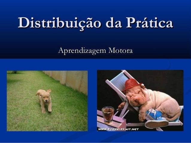 Distribuição da Prática I - Prática Maciça e Distribuída