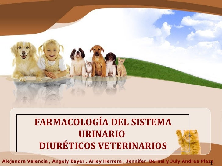 Alejandra Valencia , Angely Bayer , Arley Herrera , Jennifer  Bernal y July Andrea Plaza FARMACOLOGÍA DEL SISTEMA URINARIO...