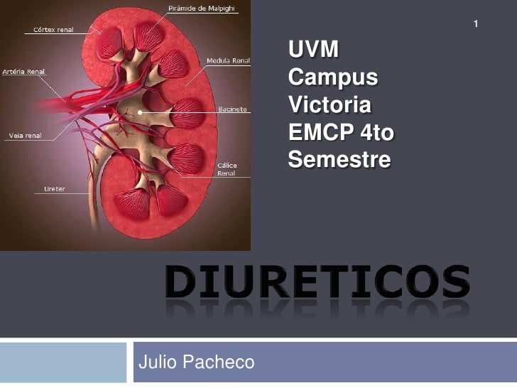 DIURETICOS<br />Julio Pacheco<br />1<br />UVM<br />Campus Victoria<br />EMCP 4to Semestre<br />