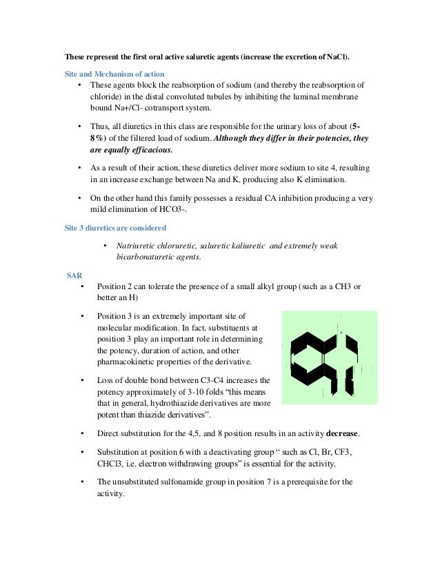 ampicillin anitbiotic resistance gene
