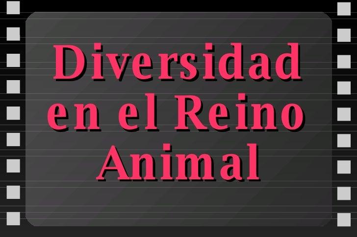 Diversidad en el Reino Animal