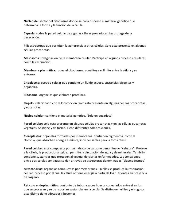Nucleoide: sector del citoplasma donde se halla disperso el material genético que determina la forma y la función de la cé...