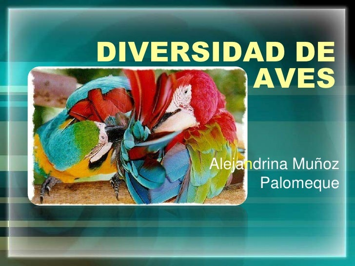 DIVERSIDAD DE AVES<br />Alejandrina Muñoz Palomeque<br />