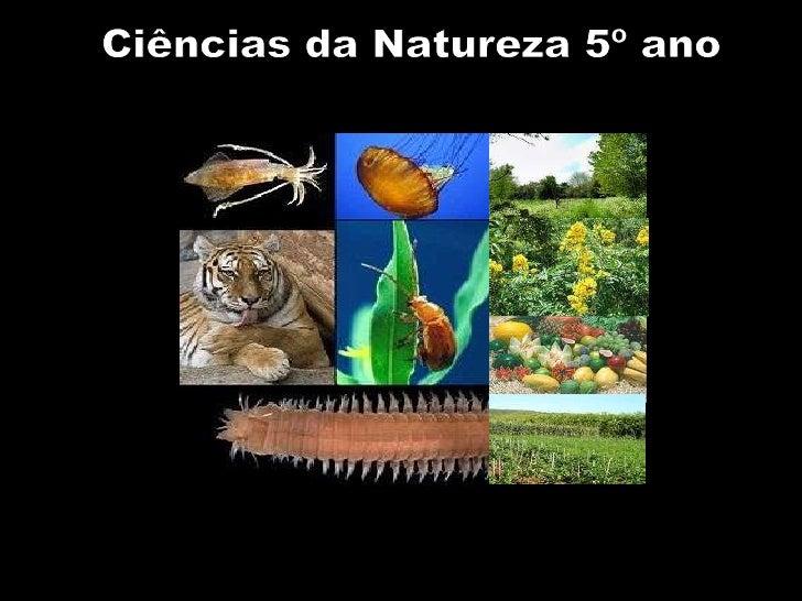 Ciências da Natureza 5º ano