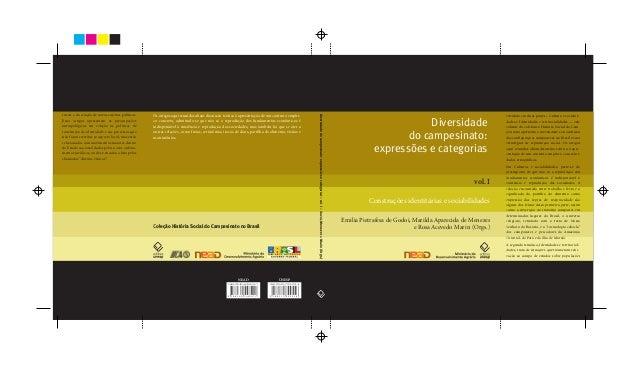 Diversidade do campesinato: expressões e categorias: construções identitárias e sociabilidades - vol.1