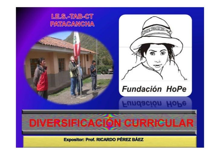 Diversificaciòn curricular 2011 [sólo lectura] [modo de compatibilidad]