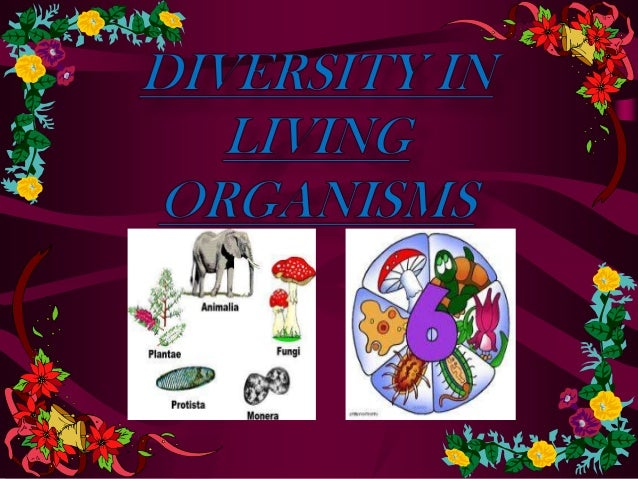diversity in living organism Classification of living things & naming in binomial nomenclature is used to name an organism the diversity in our planet is attributed to diversity within a species as the world changed in climate and in geography as time passed.